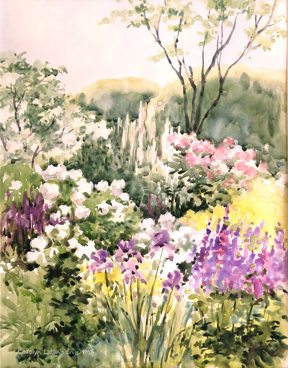 June Abundance | 10.5 x 13.5 watercolor SOLD