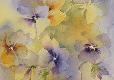 Gardens/Flowers