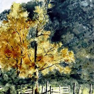 "Edge of the Field, Ireland   Watercolor 14"" x 11"""